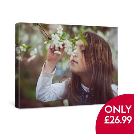 """20x16"""" Classic Canvas only £26.99"""
