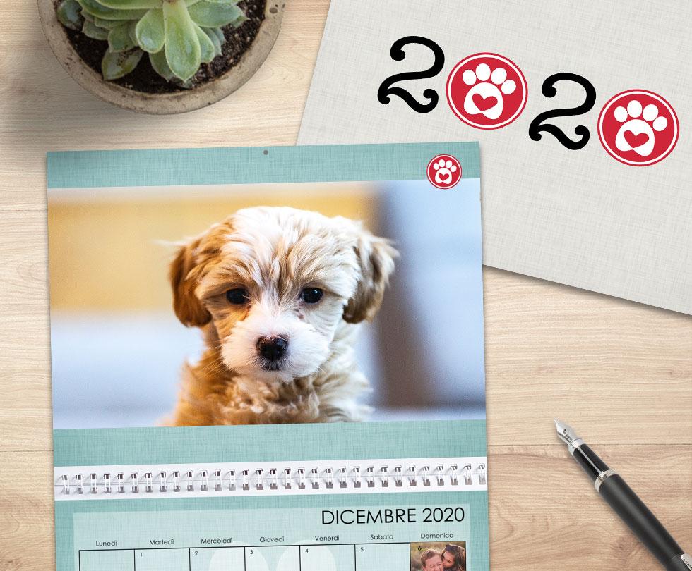I nostri consigli per il tuo foto calendario
