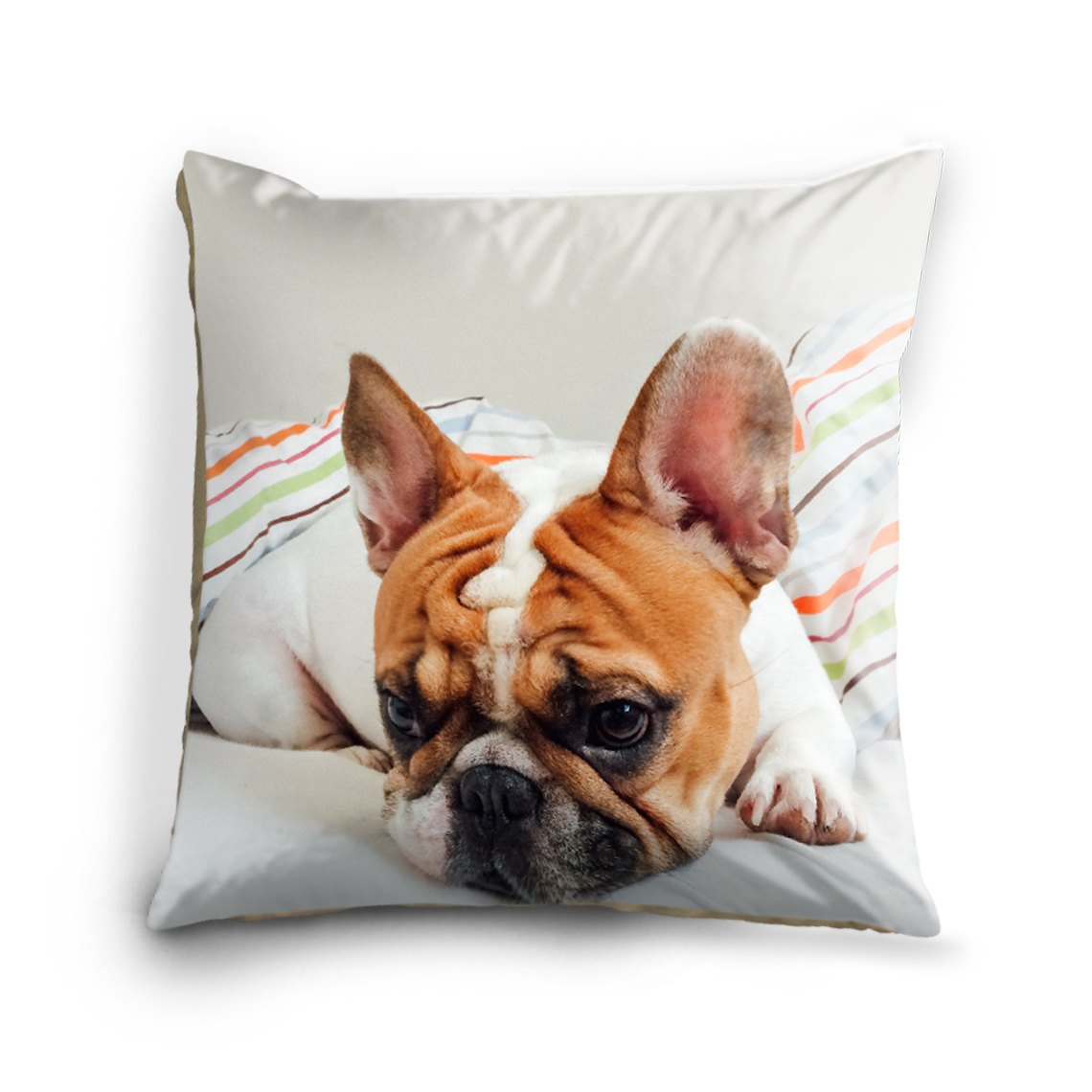 Icon Cushions