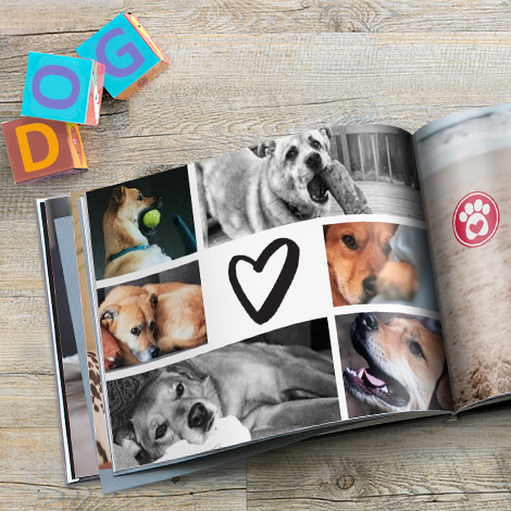 Make a photo book to share photos of your pets