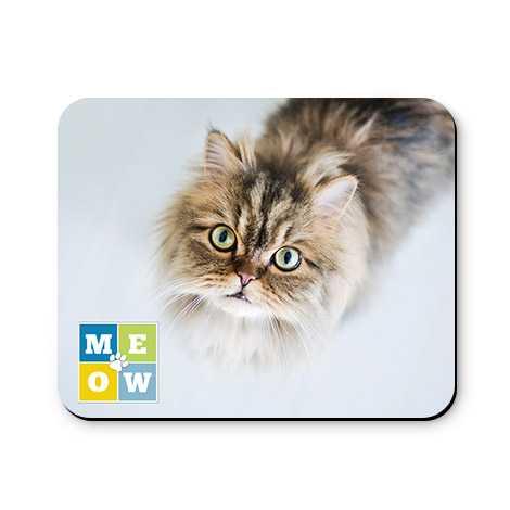 Meow Squares