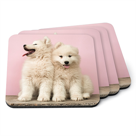 Custom Photo Coasters  sc 1 st  Snapfish & Custom Pet Photo Gifts | Photo Gifts for Pets | Snapfish