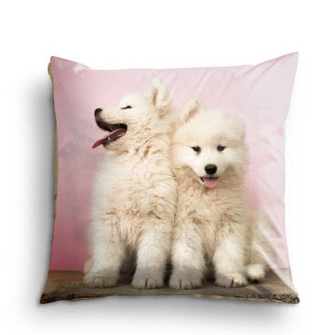 45x45cm Cushion