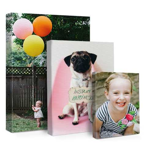 Home Décor canvas print of baby , pet