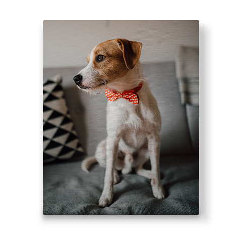 portrait canvas with image of a pet dog