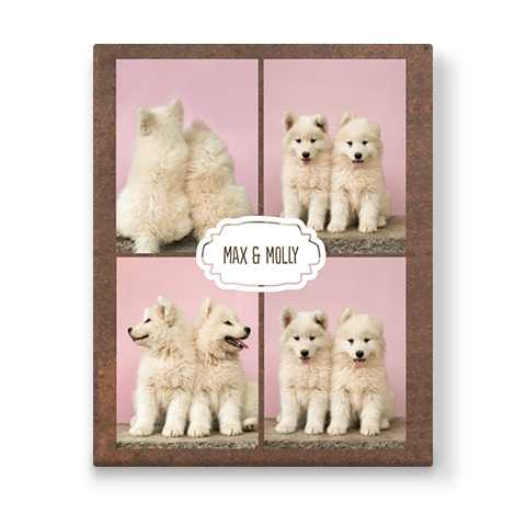 brown collage canvas with four images of two dogs