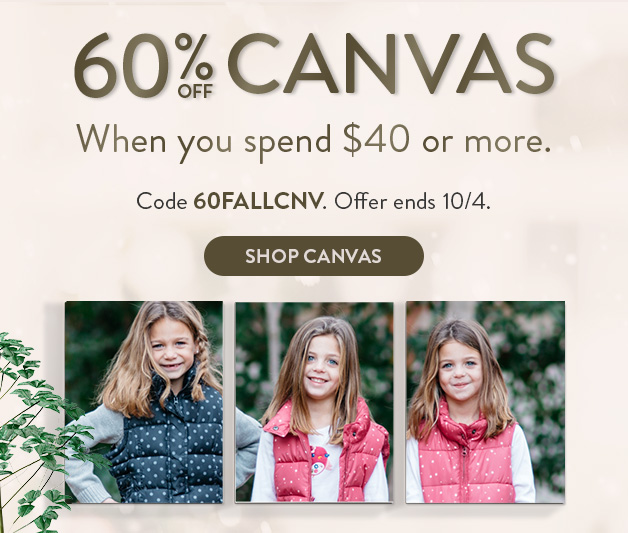 60% off Canvas orders $40+