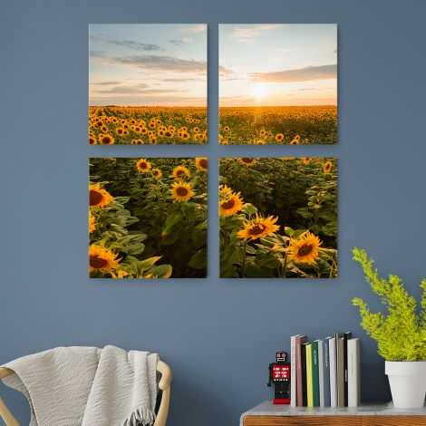 4 canvas prints with sunflowers