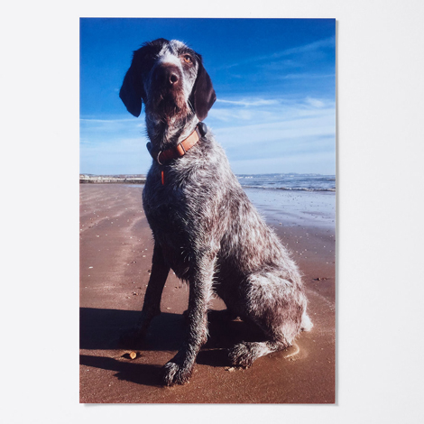 "15x10"" Photo Poster - £3.99"