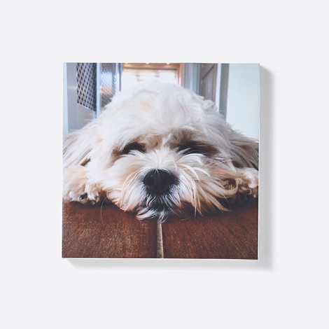 Icon Slim Canvases